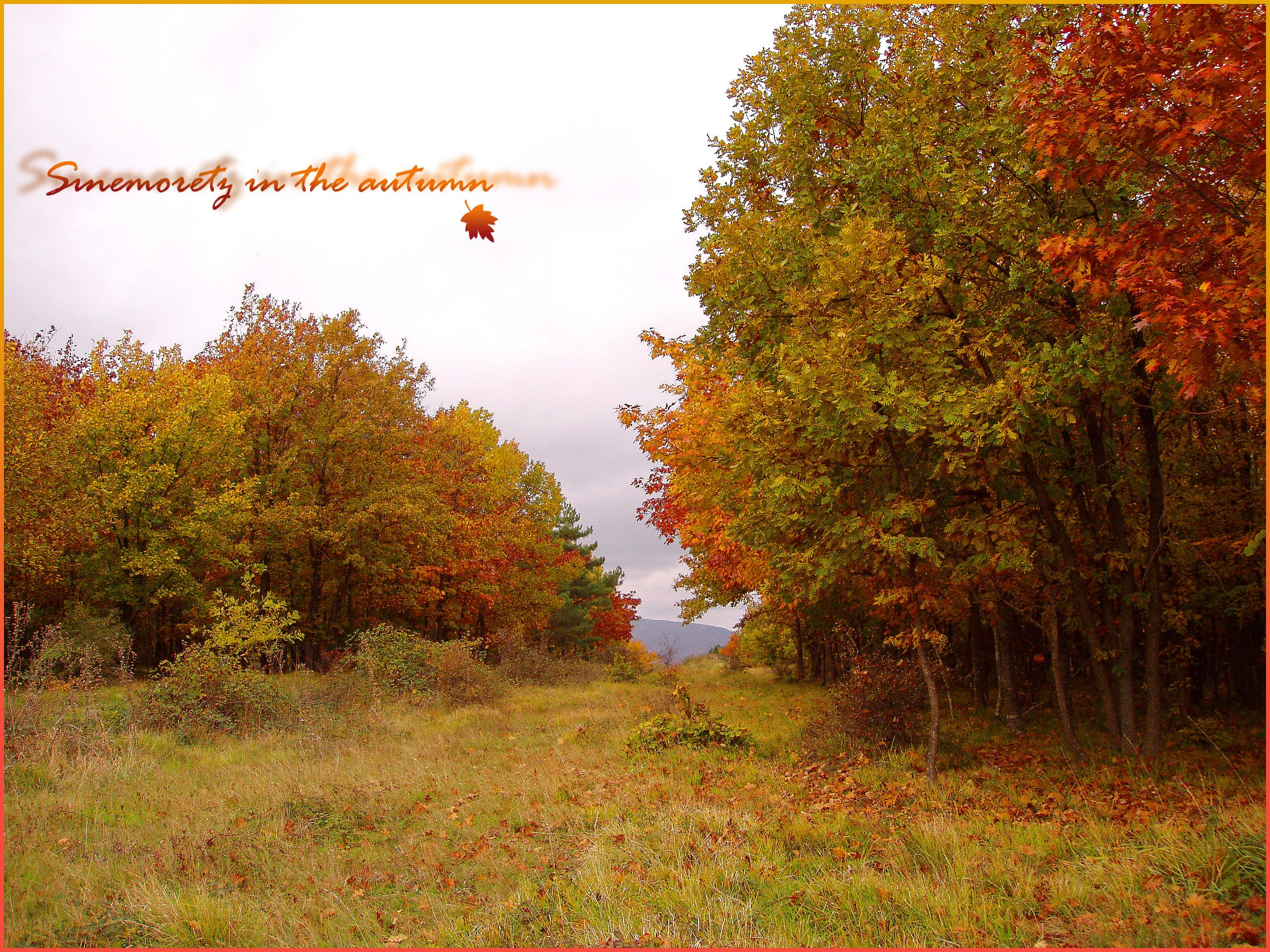 Колко е красива есента в Странджа
